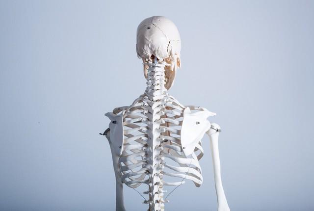あなたの背中は大丈夫??背中の歪みを治す方法|洛西口・桂川の京都中丸整体カイロプラクティック