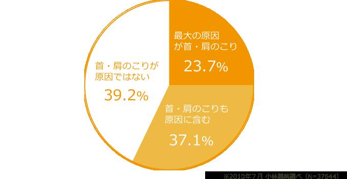 イメージ 頭痛原因調査グラフ